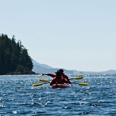 Lots to see on a Tatoosh Islands Kayak Tour with Southeast Exposure